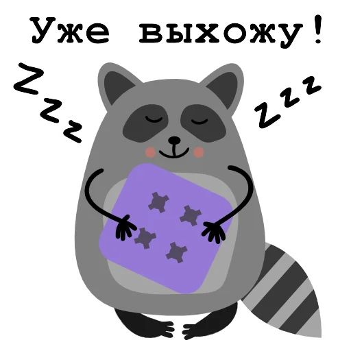"Sticker ""Raccoon Nikita-12"""